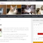 garde de chats à Annecy